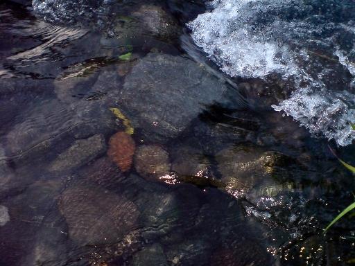 "Jernihnya sungai ""oi Marai"""